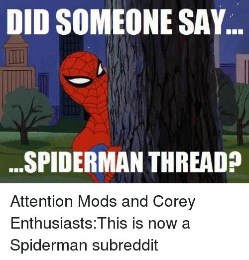 Funniest Meme Subreddits : Best memes about did someone say spiderman thread