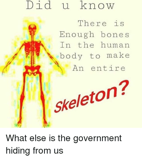 Bones, Memes, and Government: Did u know  There is  Enough bones  In the human  body to make  An entire  Skeleton? What else is the government hiding from us