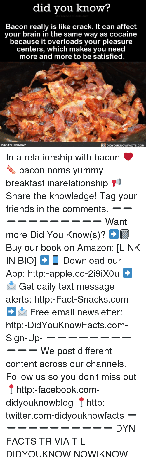 noms: did vou know?  Bacon really is like crack. It can affect  your brain in the same way as cocaine  because it overloads your pleasure  centers, which makes you need  more and more to be satisfied  te  PHOTO: PIXABAY  DIDYOUKNOWFACTS.COM In a relationship with bacon ❤️🥓 bacon noms yummy breakfast inarelationship 📢 Share the knowledge! Tag your friends in the comments. ➖➖➖➖➖➖➖➖➖➖➖ Want more Did You Know(s)? ➡📓 Buy our book on Amazon: [LINK IN BIO] ➡📱 Download our App: http:-apple.co-2i9iX0u ➡📩 Get daily text message alerts: http:-Fact-Snacks.com ➡📩 Free email newsletter: http:-DidYouKnowFacts.com-Sign-Up- ➖➖➖➖➖➖➖➖➖➖➖ We post different content across our channels. Follow us so you don't miss out! 📍http:-facebook.com-didyouknowblog 📍http:-twitter.com-didyouknowfacts ➖➖➖➖➖➖➖➖➖➖➖ DYN FACTS TRIVIA TIL DIDYOUKNOW NOWIKNOW