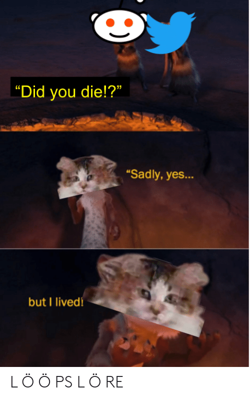 """did you die: 