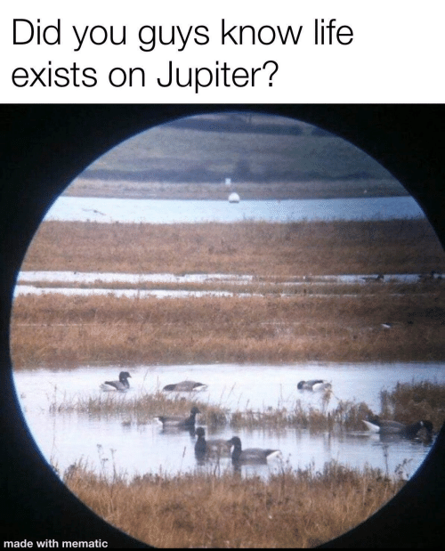 Jupiter: Did you guys know life  exists on Jupiter?  made with mematic