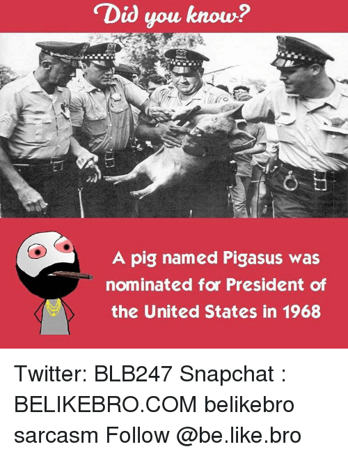 presidents of the united states: Did you know?  A pig named Pigasus was  nominated for President of  the United States in 1968 Twitter: BLB247 Snapchat : BELIKEBRO.COM belikebro sarcasm Follow @be.like.bro