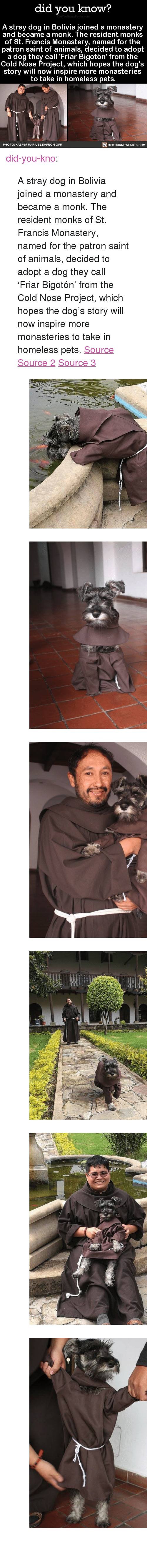 """st francis: did you know?  A stray dog in Bolivia joined a monastery  and became a monk. The resident monks  of St. Francis Monastery, named for the  patron saint of animals, decided to adopt  a dog they call 'Friar Bigotón' from the  Cold Nose Project, which hopes the dog's  story will now inspire more monasteries  to take in homeless pets.  DIDYOUKNOWFACTS.coM  PHOTO: KASPER MARIUSZ KAPRON OFM <p><a href=""""http://didyouknowblog.com/post/158214202418/a-stray-dog-in-bolivia-joined-a-monastery-and"""" class=""""tumblr_blog"""">did-you-kno</a>:</p>  <blockquote><p>A stray dog in Bolivia joined a monastery and became a monk. The resident monks of St. Francis Monastery, named for the patron saint of animals, decided to adopt a dog they call 'Friar Bigotón' from the Cold Nose Project, which hopes the dog's story will now inspire more monasteries to take in homeless pets. <span><a href=""""https://www.thedodo.com/monastery-adopts-friar-dog-2303203254.html"""">Source</a></span> <span><a href=""""https://www.facebook.com/kasper.kapronofm/media_set?set=a.1478968562127882.1073742169.100000442572550&amp;type=3"""">Source 2</a></span> <span><a href=""""http://www.humanesociety.org/about/departments/faith/francis_files/st_francis_of_assisi.html"""">Source 3</a></span></p><figure class=""""tmblr-full"""" data-orig-height=""""506"""" data-orig-width=""""482""""><img src=""""https://78.media.tumblr.com/808be0a6c45756f28c2b9178b8582561/tumblr_inline_omk5gaQPKC1sjh1ps_540.jpg"""" data-orig-height=""""506"""" data-orig-width=""""482""""/></figure><figure data-orig-width=""""582"""" data-orig-height=""""683"""" class=""""tmblr-full""""><img src=""""https://78.media.tumblr.com/3f3b79c338cf6032143eea214f94d01c/tumblr_inline_omj6snITtN1qdd173_540.png"""" alt=""""image"""" data-orig-width=""""582"""" data-orig-height=""""683""""/></figure><figure data-orig-width=""""563"""" data-orig-height=""""691"""" class=""""tmblr-full""""><img src=""""https://78.media.tumblr.com/6d18b9a1a91e5f3a5a22aeab5f1596d8/tumblr_inline_omj6so6iWg1qdd173_540.png"""" alt=""""image"""" data-orig-width=""""563"""" data-orig-height=""""691""""/></figure><figure """