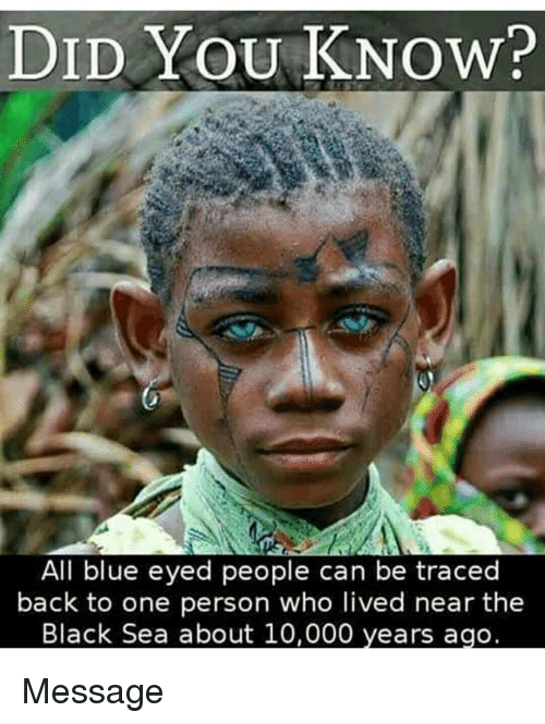 DID YOU KNOW? All Blue Eyed People Can Be Traced Back to ...