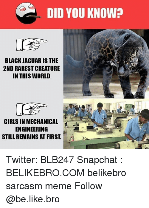 Be Like, Girls, and Meme: DID YOU KNOW?  BLACK JAGUAR IS THE  2ND RAREST CREATURE  IN THIS WORLD  GIRLS IN MECHANICAL  ENGINEERING  STILL REMAINS AT FIRST.E Twitter: BLB247 Snapchat : BELIKEBRO.COM belikebro sarcasm meme Follow @be.like.bro