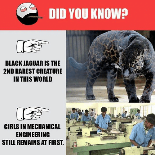 Girls, Memes, and Black: DID YOU KNOW?  BLACK JAGUAR IS THE  2ND RAREST CREATURE  IN THIS WORLD  GIRLS IN MECHANICAL  ENGINEERING  STILL REMAINS AT FIRST.