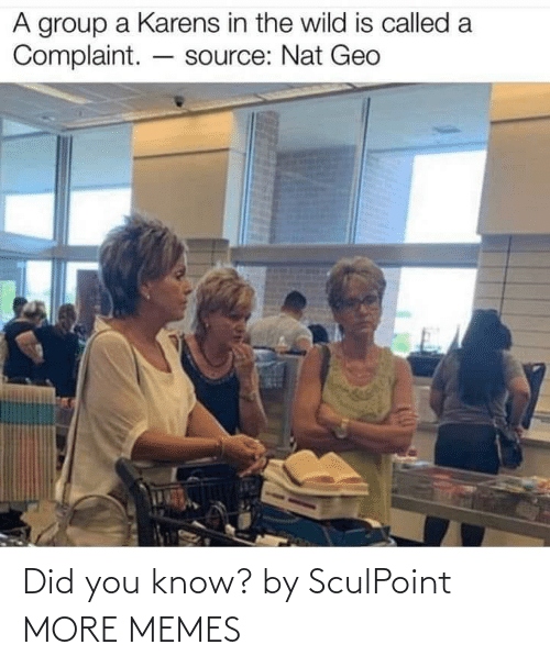 did you know: Did you know? by SculPoint MORE MEMES
