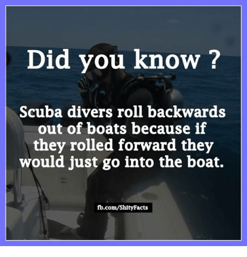 memes: Did you know?  cuba divers roll backwards  of boats because if  they rolled forward they  would just go into the boat.  fb.com/Shity Facts