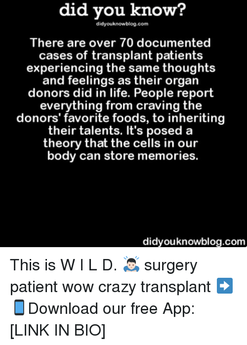 Memes, Patient, and 🤖: did you know?  did youknowblog.com  There are over 70 documented  cases of transplant patients  experiencing the same thoughts  and feelings as their organ  donors did in life. People report  everything from craving the  donors' favorite foods, to inheriting  their talents. It's posed a  theory that the cells in our  body can store memories.  didyouknowblog.com This is W I L D. 🙇🏻 surgery patient wow crazy transplant ➡📱Download our free App: [LINK IN BIO]