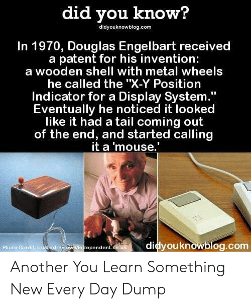 """patent: did you know?  didyouknowblog.com  In 1970, Douglas Engelbart received  a patent for his invention:  a wooden shell with metal wheels  he called the """"X-Y Position  Indicator for a Display System  Eventually he noticed it looked  like it had a tail coming out  of the end, and started calling  it a 'mouse.  Photo Credit truotedrevi  didyouknowblog.com  ependent Another You Learn Something New Every Day Dump"""