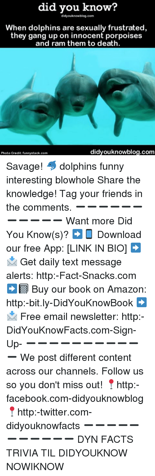 Amazon, Facebook, and Facts: did you know?  didyouknowblog.com  When dolphins are sexually frustrated  they gang up on innocent porpoises  and ram them to death  didyouknowblog.com  Photo Credit: funnystack com Savage! 🐬 dolphins funny interesting blowhole Share the knowledge! Tag your friends in the comments. ➖➖➖➖➖➖➖➖➖➖➖ Want more Did You Know(s)? ➡📱 Download our free App: [LINK IN BIO] ➡📩 Get daily text message alerts: http:-Fact-Snacks.com ➡📓 Buy our book on Amazon: http:-bit.ly-DidYouKnowBook ➡📩 Free email newsletter: http:-DidYouKnowFacts.com-Sign-Up- ➖➖➖➖➖➖➖➖➖➖➖ We post different content across our channels. Follow us so you don't miss out! 📍http:-facebook.com-didyouknowblog 📍http:-twitter.com-didyouknowfacts ➖➖➖➖➖➖➖➖➖➖➖ DYN FACTS TRIVIA TIL DIDYOUKNOW NOWIKNOW