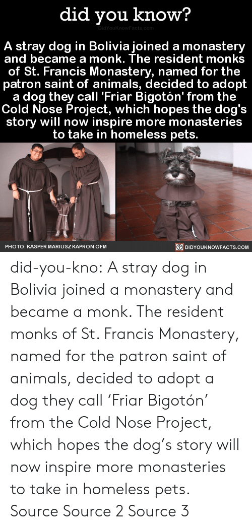 st francis: did you know?  DidYouKnowFacts.com  A stray dog in Boliviajoined a monastery  and became a monk. The resident monks  of St. Francis Monastery, named for the  patron saint of animals, decided to adopt  a dog they call 'Friar Bigotón' from the  Cold Nose Project, which hopes the dog's  story will now inspire more monasteries  to take in homeless pets.  DIDYOUKNOWFACTS.COM  PHOTO: KASPER MARIUSZKAPRON OFM did-you-kno: A stray dog in Bolivia joined a monastery and became a monk. The resident monks of St. Francis Monastery, named for the patron saint of animals, decided to adopt a dog they call 'Friar Bigotón' from the Cold Nose Project, which hopes the dog's story will now inspire more monasteries to take in homeless pets. Source Source 2 Source 3