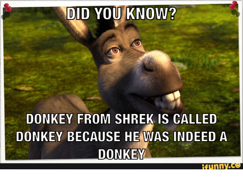 Donkey From Shrek And Indee DID YOU KNOW DONKEY FROM SHREK