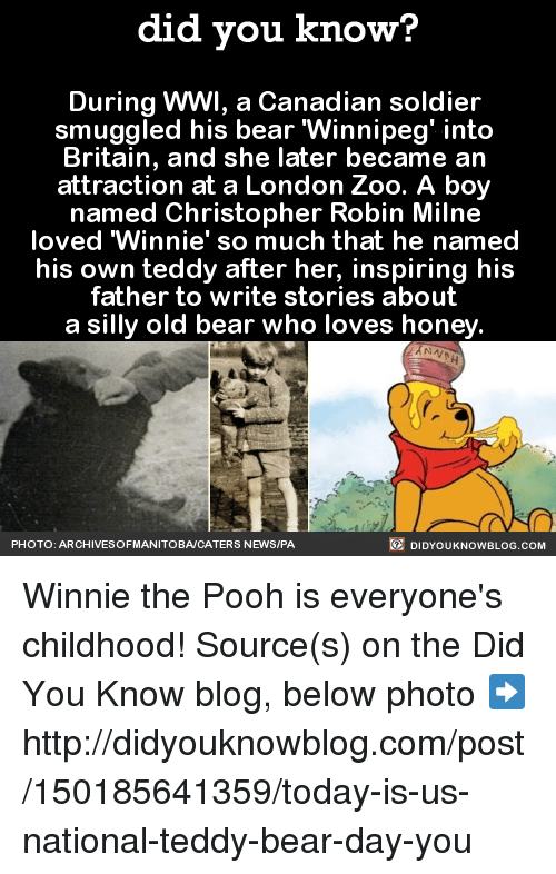 """Dank, Honey, I Shrunk the Kids, and Love: did you know?  During WWI, a Canadian soldier  smuggled his bear Winnipeg' into  Britain, and she later became an  attraction at a London Zoo. A boy  named Christopher Robin Milne  loved """"Winnie' so much that he named  his own teddy after her, inspiring his  father to write stories about  a silly old bear who loves honey  DIDYouK Now BLOG coM  PHOTO: ARCHIVESOFMANITOBACATERS NEWS/PA Winnie the Pooh is everyone's childhood!  Source(s) on the Did You Know blog, below photo ➡️  http://didyouknowblog.com/post/150185641359/today-is-us-national-teddy-bear-day-you"""