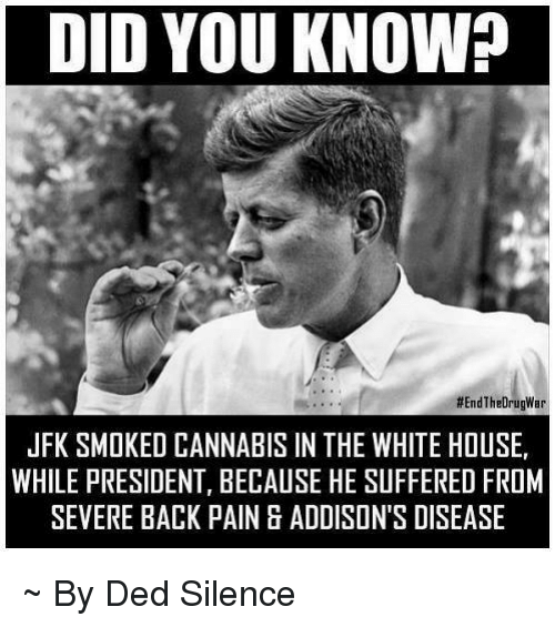 Cannabis: DID YOU KNOW?  #End The DrugWar  JFK SMOKED CANNABIS IN THE WHITE HOUSE,  WHILE PRESIDENT, BECAUSE HE SUFFERED FROM  SEVERE BACK PAINBADDISON'S DISEASE ~ By Ded Silence