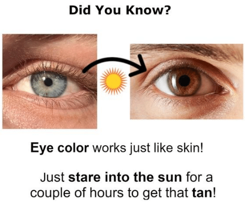 Sun, The Sun, and Eye: Did You Know?  Eye color works just like skin!  Just stare into the sun for a  couple of hours to get that tarn!