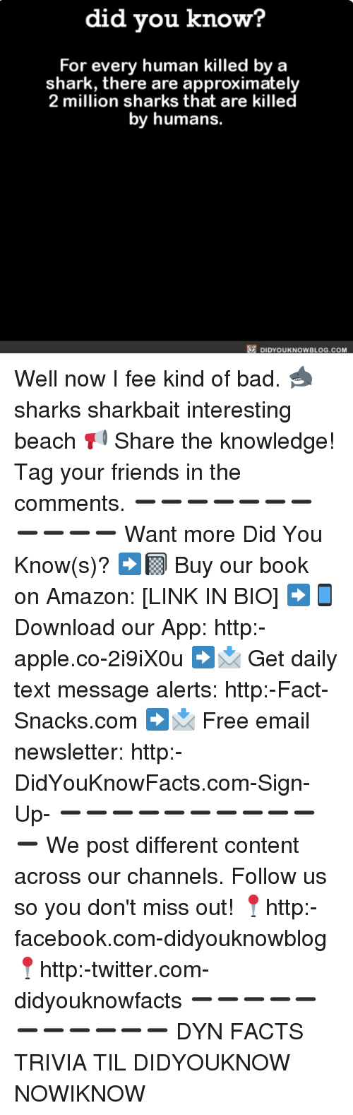 Amazon, Apple, and Bad: did you know?  For every human killed by a  shark, there are approximately  2 million sharks that are killed  by humans.  DIDYOUKNOWBLOG.COM Well now I fee kind of bad. 🦈 sharks sharkbait interesting beach 📢 Share the knowledge! Tag your friends in the comments. ➖➖➖➖➖➖➖➖➖➖➖ Want more Did You Know(s)? ➡📓 Buy our book on Amazon: [LINK IN BIO] ➡📱 Download our App: http:-apple.co-2i9iX0u ➡📩 Get daily text message alerts: http:-Fact-Snacks.com ➡📩 Free email newsletter: http:-DidYouKnowFacts.com-Sign-Up- ➖➖➖➖➖➖➖➖➖➖➖ We post different content across our channels. Follow us so you don't miss out! 📍http:-facebook.com-didyouknowblog 📍http:-twitter.com-didyouknowfacts ➖➖➖➖➖➖➖➖➖➖➖ DYN FACTS TRIVIA TIL DIDYOUKNOW NOWIKNOW