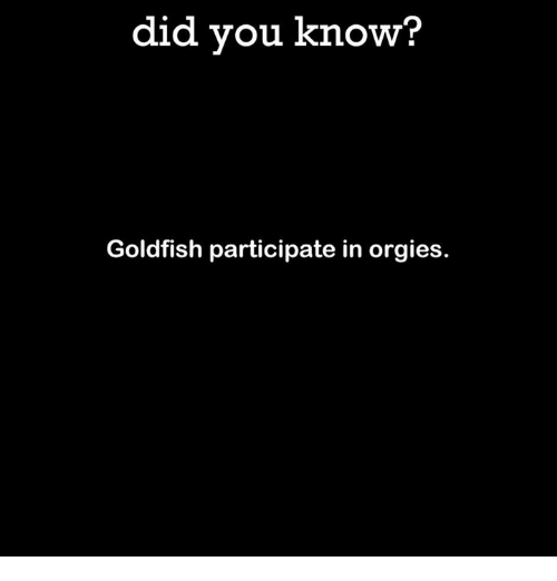Dank, Goldfish, and Orgy: did you know?  Goldfish participate in orgies.