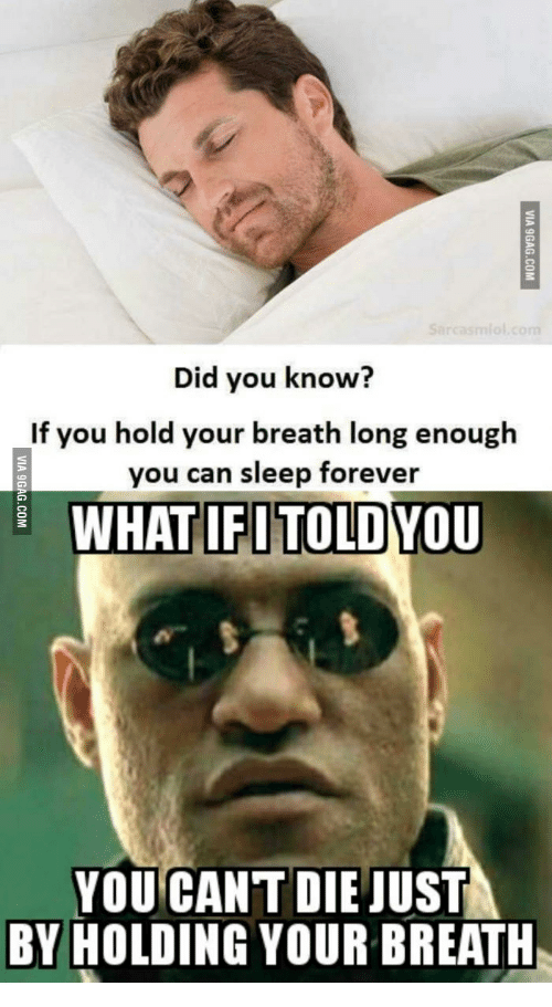Holding It In Too Long: Did you know?  If you hold your breath long enough  you can sleep forever  WHAT IFI TOLDYOU  YOU CAN'T DIE JUST  BY HOLDING YOUR BREATH