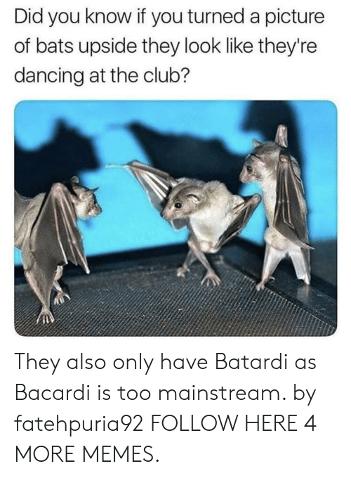 Too Mainstream: Did you know if you turned a picture  of bats upside they look like they're  dancing at the club? They also only have Batardi as Bacardi is too mainstream. by fatehpuria92 FOLLOW HERE 4 MORE MEMES.