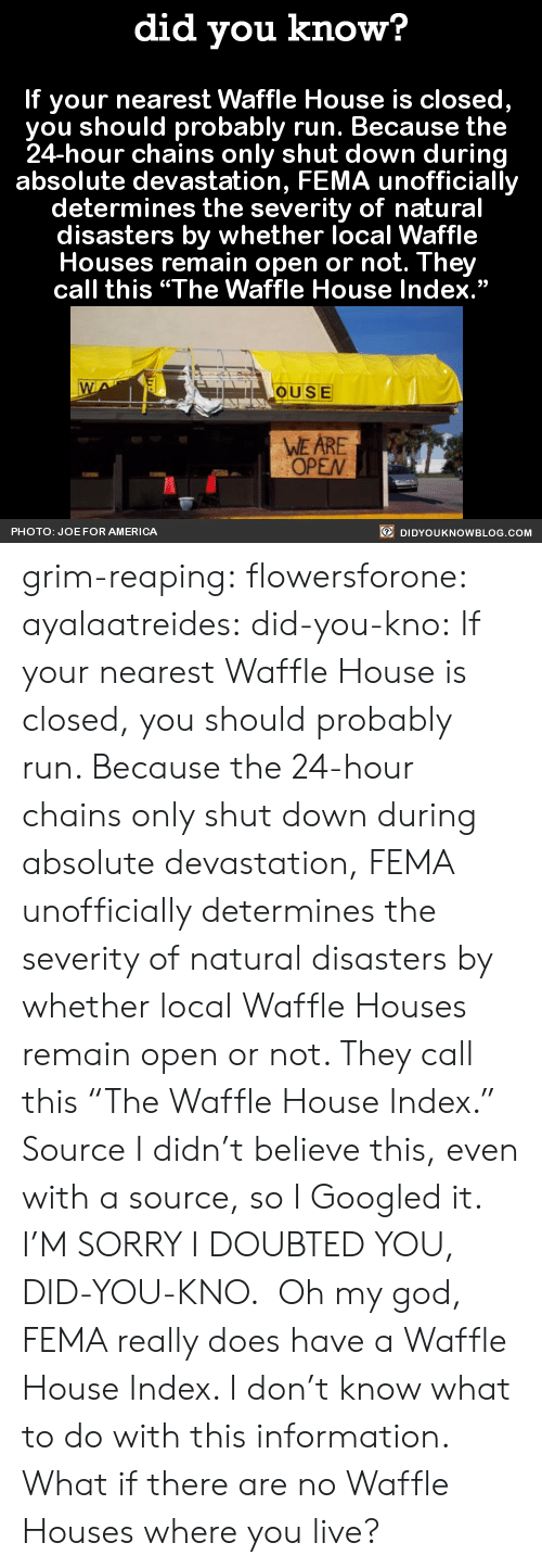 """fema: did you know?  If your nearest Waffle House is closed,  you should probably run. Because the  24-hour chains only shut down during  absolute devastation, FEMA unofficially  determines the severity of natural  disasters by whether local Waffle  Houses remain open or not. They  call this """"The Waffle House Index.""""  OUSE  WE ARE  OPEN  PHOTO: JOE FOR AMERICA  DIDYOUKNOWBLOG.COM grim-reaping: flowersforone:   ayalaatreides:  did-you-kno: If your nearest Waffle House is closed,  you should probably run. Because the  24-hour chains only shut down during  absolute devastation, FEMA unofficially  determines the severity of natural  disasters by whether local Waffle  Houses remain open or not. They  call this """"The Waffle House Index.""""  Source I didn't believe this, even with a source, so I Googled it. I'M SORRY I DOUBTED YOU, DID-YOU-KNO. Oh my god, FEMA really does have a Waffle House Index. I don't know what to do with this information.  What if there are no Waffle Houses where you live?"""