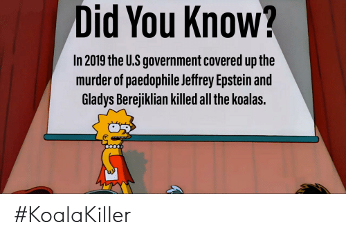 Gladys Berejiklian: Did You Know?  In 2019 the U.S government covered up the  murder of paedophile Jeffrey Epstein and  Gladys Berejiklian killed all the koalas. #KoalaKiller