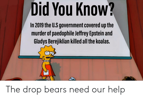 Gladys Berejiklian: Did You Know?  In 2019 the U.S government covered up the  murder of paedophile Jeffrey Epstein and  Gladys Berejiklian killed all the koalas. The drop bears need our help