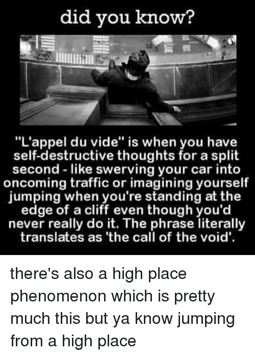 """Memes, Traffic, and Never: did you know?  """"L'appel du vide"""" is when you have  self-destructive thoughts for a split  second like swerving your car into  oncoming traffic or imagining yourself  jumping when you're standing at the  edge of a cliff even though you'd  never really do it. The phrase literally  translates as 'the call of the void' there's also a high place phenomenon which is pretty much this but ya know jumping from a high place"""