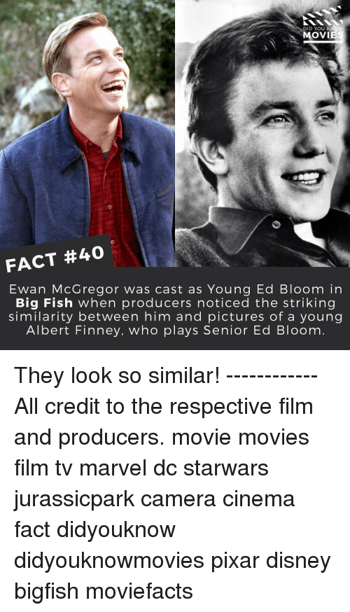 Big Fish: DID YOU KNOW  MOVIE  FACT #40  Ewan McGregor was cast as Young Ed Bloom in  Big Fish when producers noticed the striking  similarity between him and pictures of a young  Albert Finney, who plays Senior Ed Bloom They look so similar! ------------ All credit to the respective film and producers. movie movies film tv marvel dc starwars jurassicpark camera cinema fact didyouknow didyouknowmovies pixar disney bigfish moviefacts