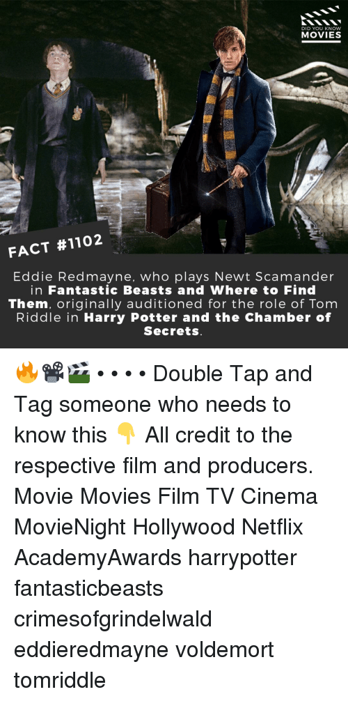 Harry Potter, Memes, and Movies: DID YOU KNOW  MOVIES  FACT #1102  Eddie Redmayne, who plays Newt Scamander  in Fantastic Beasts and Where to Find  Them, originally auditioned for the role of Tom  Riddle in Harry Potter and the Chamber of  Secrets 🔥📽️🎬 • • • • Double Tap and Tag someone who needs to know this 👇 All credit to the respective film and producers. Movie Movies Film TV Cinema MovieNight Hollywood Netflix AcademyAwards harrypotter fantasticbeasts crimesofgrindelwald eddieredmayne voldemort tomriddle