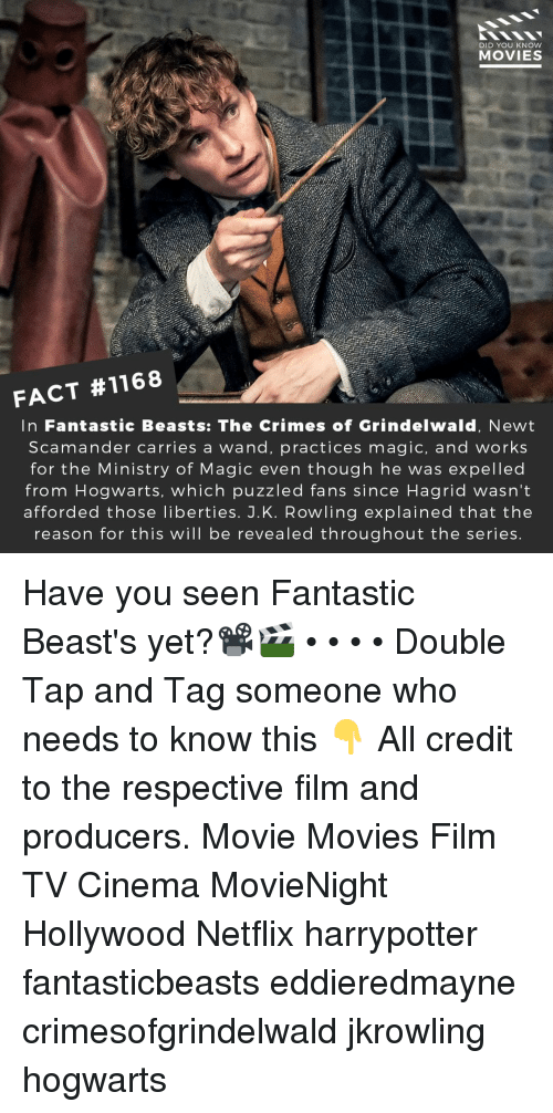 hagrid: DID YOU KNOW  MOVIES  FACT #1168  In Fantastic Beasts: The Crimes of Grindelwald, Newt  Scamander carries a wand, practices magic, and works  for the Ministry of Magic even though he was expelled  from Hogwarts, which puzzled fans since Hagrid wasn't  afforded those liberties. J.K. Rowling explained that the  reason for this will be revealed throughout the series Have you seen Fantastic Beast's yet?📽️🎬 • • • • Double Tap and Tag someone who needs to know this 👇 All credit to the respective film and producers. Movie Movies Film TV Cinema MovieNight Hollywood Netflix harrypotter fantasticbeasts eddieredmayne crimesofgrindelwald jkrowling hogwarts