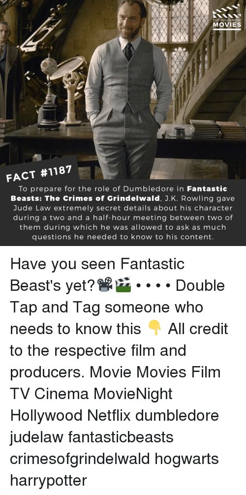 harrypotter: DID YOU KNOW  MOVIES  FACT #1187  To prepare for the role of Dumbledore in Fantastic  Beasts: The Crimes of Grindelwald, J.K. Rowling gave  Jude Law extremely secret details about his character  during a two and a half-hour meeting between two of  them during which he was allowed to ask as much  questions he needed to know to his content Have you seen Fantastic Beast's yet?📽️🎬 • • • • Double Tap and Tag someone who needs to know this 👇 All credit to the respective film and producers. Movie Movies Film TV Cinema MovieNight Hollywood Netflix dumbledore judelaw fantasticbeasts crimesofgrindelwald hogwarts harrypotter