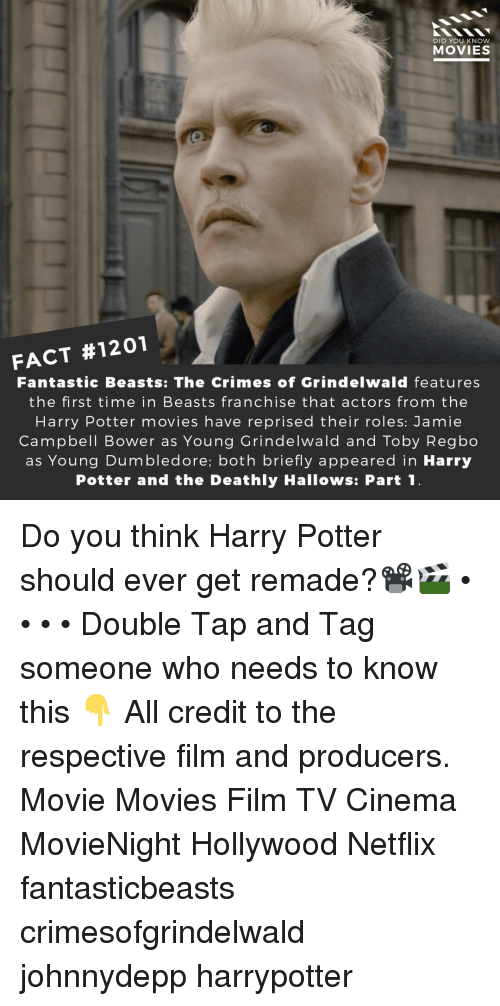 toby: DID YOU KNOW  MOVIES  FACT #1201  Fantastic Beasts: The Crimes of Grindelwald features  the first time in Beasts franchise that actors from the  Harry Potter movies have reprised their roles: Jamie  Campbell Bower as Young Grindelwald and Toby Regbo  as Young Dumbledore; both briefly appeared in Harry  Potter and the Deathly Hallows: Part1 Do you think Harry Potter should ever get remade?📽️🎬 • • • • Double Tap and Tag someone who needs to know this 👇 All credit to the respective film and producers. Movie Movies Film TV Cinema MovieNight Hollywood Netflix fantasticbeasts crimesofgrindelwald johnnydepp harrypotter