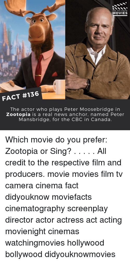 knowing movie: DID YOU KNOW  MOVIES  FACT #136  The actor who plays Peter Moosebridge in  Zootopia is a real news anchor, named Peter  Mansbridge, for the CBC in Canada Which movie do you prefer: Zootopia or Sing? . . . . . All credit to the respective film and producers. movie movies film tv camera cinema fact didyouknow moviefacts cinematography screenplay director actor actress act acting movienight cinemas watchingmovies hollywood bollywood didyouknowmovies