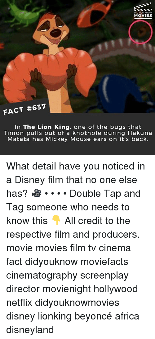 mickey mouse ears: DID YOU KNOW  MOVIES  FACT #637  In The Lion King, one of the bugs that  Timon pulls out of a knothole during Hakuna  Matata has Mickey Mouse ears on it's back. What detail have you noticed in a Disney film that no one else has? 🎥 • • • • Double Tap and Tag someone who needs to know this 👇 All credit to the respective film and producers. movie movies film tv cinema fact didyouknow moviefacts cinematography screenplay director movienight hollywood netflix didyouknowmovies disney lionking beyoncé africa disneyland