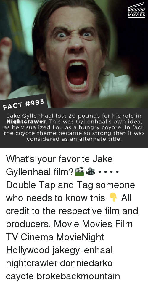 gyllenhaal: DID YOU KNOW  MOVIES  FACT #993  Jake Gyllenhaal lost 20 pounds for his role in  Nightcrawer. This was Cyllenhaal's own idea,  as he visualized Lou as a hungry coyote. In fact,  the coyote theme became so strong that it was  considered as an alternate title. What's your favorite Jake Gyllenhaal film?🎬🎥 • • • • Double Tap and Tag someone who needs to know this 👇 All credit to the respective film and producers. Movie Movies Film TV Cinema MovieNight Hollywood jakegyllenhaal nightcrawler donniedarko cayote brokebackmountain