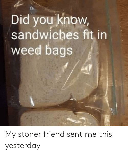 Weed, Fit, and Friend: Did you know,  sandwiches fit in  weed bags My stoner friend sent me this yesterday