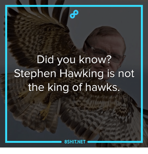 Stephen Hawk: Did you know?  Stephen Hawking is not  the king of hawks.  8SHIT NET