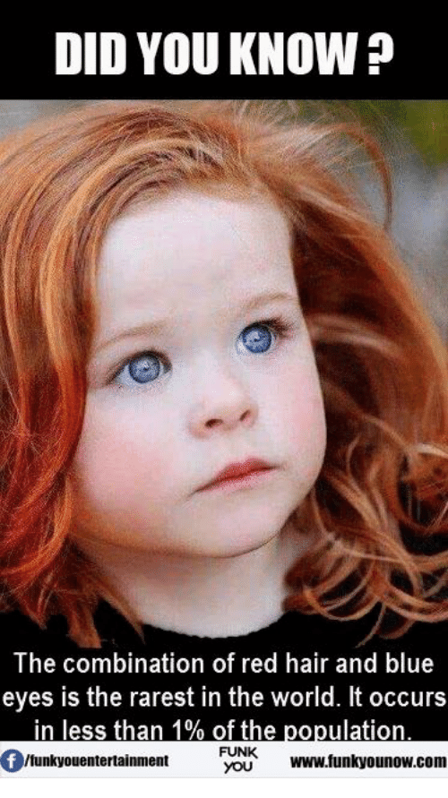 did you know the combination of red hair and blue 7553217 did you know? the combination of red hair and blue eyes is the