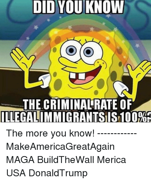 Anaconda, Memes, and The More You Know: DID YOU KNOW  THE CRIMINALRATE OF  ILLEGALIMMIGRANTSIS 100%A The more you know! ------------ MakeAmericaGreatAgain MAGA BuildTheWall Merica USA DonaldTrump