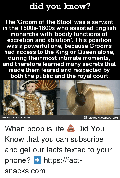 Dank, Poop, and Queen: did you know?  The Groom of the Stool' was a servant  in the 1500s-1800s who assisted English  monarchs with bodily functions of  excretion and ablution'. This position  was a powerful one, because Grooms  had access to the King or Queen alone,  during their most intimate moments  and therefore learned many secrets that  made them feared and respected by  both the public and the royal court  DIDYouK Now BLOG coM  PHOTO: HISTORY BUFF When poop is life 💩  Did You Know that you can subscribe and get our facts texted to your phone? ➡ https://fact-snacks.com