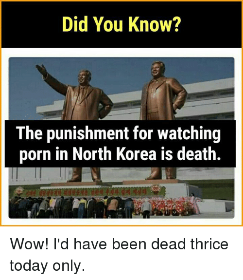 Memes, North Korea, and Wow: Did You Know?  The punishment for watching  porn in North Korea is death. Wow! I'd have been dead thrice today only.