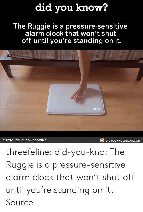 Alarm Clock: did you know?  The Ruggie is a pressure-sensitive  alarm clock that won't shut  off until you're standing on it.  DE 90  PHOTO: YOUTUBE/UPCOMING  DIDYOUKNOWBLOG.COM threefeline: did-you-kno:  The Ruggie is a pressure-sensitive alarm clock that won't shut off until you're standing on it.  Source