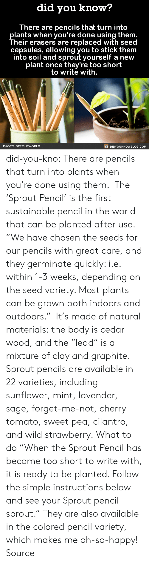 """soil: did you know?  There are pencils that turn into  plants when you're done using them  Their erasers are replaced with seed  capsules, allowing you to stick them  into soil and sprout yourself a new  plant once they're too short  to write with.  PHOTO: SPROUTWORLD  DIDYOUKNOWBLOG.COM did-you-kno:  There are pencils that turn into  plants when you're done using them.   The 'Sprout Pencil' is the first sustainable pencil in the world that can be planted after use.   """"We have chosen the seeds for our pencils with great care, and they germinate quickly: i.e. within 1-3 weeks, depending on the seed variety. Most plants can be grown both indoors and outdoors."""" It's made of natural materials: the body is cedar wood, and the """"lead"""" is a mixture of clay and graphite. Sprout pencils are available in 22 varieties, including sunflower, mint, lavender, sage, forget-me-not, cherry tomato, sweet pea, cilantro, and wild strawberry. What to do """"When the Sprout Pencil has become too short to write with, it is ready to be planted. Follow the simple instructions below and see your Sprout pencil sprout."""" They are also available in the colored pencil variety, which makes me oh-so-happy! Source"""