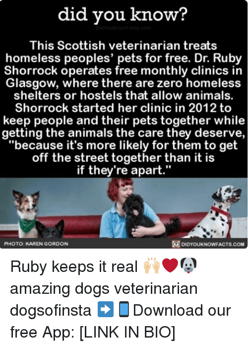 "Animals, Homeless, and Memes: did you know?  This Scottish veterinarian treats  homeless peoples' pets for free. Dr. Ruby  Shorrock operates free monthly clinics in  Glasgow, where there are zero homeless  shelters or hostels that allow animals.  Shorrock started her clinic in 2012 to  keep people and their pets together while  getting the animals the care they deserve,  ""because it's more likely for them to get  off the street together than it is  if they're apart.""  PHOTO: KAREN GORDON  DIDYOUKNOWFACTS.COM Ruby keeps it real 🙌🏼❤🐶 amazing dogs veterinarian dogsofinsta ➡📱Download our free App: [LINK IN BIO]"