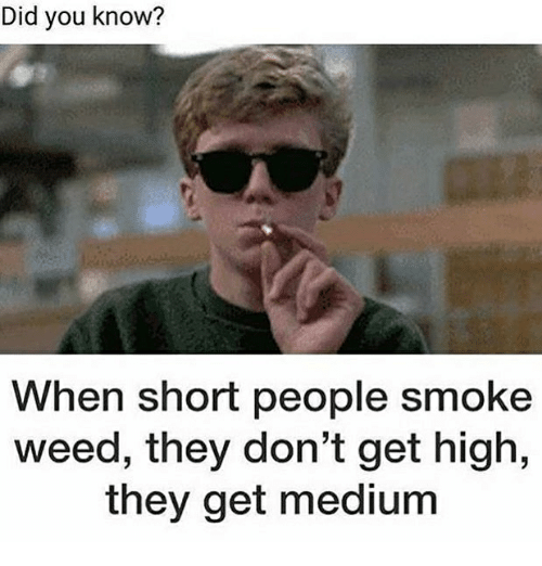 Memes, Weed, and 🤖: Did you know?  When short people smoke  weed, they don't get high,  they get medium