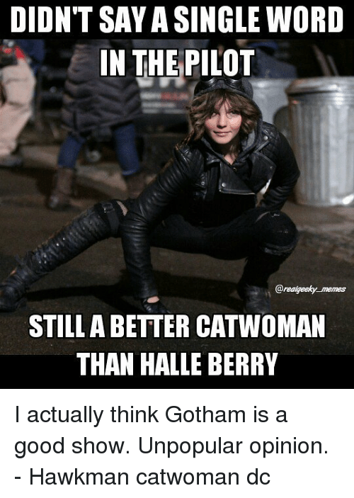 Memes, Good, and Gotham: DIDNT SAY A SINGLE WORD  IN THE  PILOT  @realgeeky memes  STILLA BETTER CATWOMAN  THAN HALLE BERRY I actually think Gotham is a good show. Unpopular opinion. - Hawkman catwoman dc