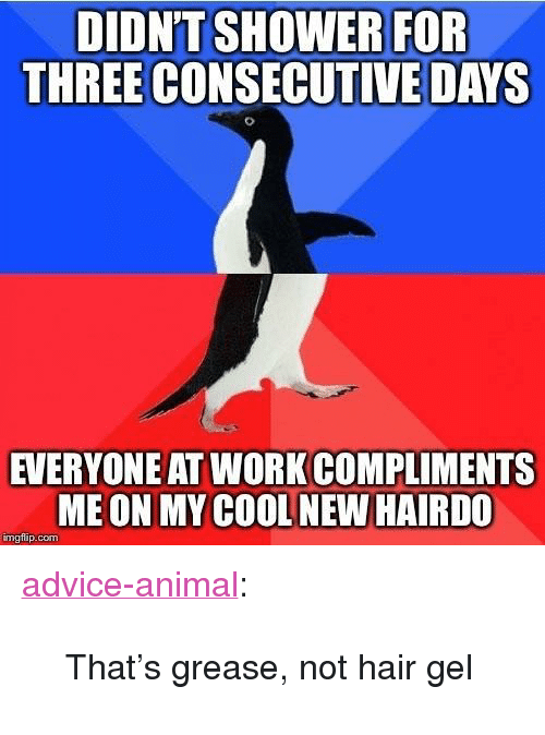 "Advice, Tumblr, and Work: DIDN'TSHOWER FOR  THREE CONSECUTIVE DAYS  EVERYONE AT WORK COMPLIMENTS  ME ON MY COOL NEW HAIRDO  mgflip.com <p><a href=""http://advice-animal.tumblr.com/post/166203233529/thats-grease-not-hair-gel"" class=""tumblr_blog"">advice-animal</a>:</p>  <blockquote><p>That's grease, not hair gel</p></blockquote>"