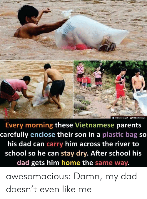 carefully: /didyouknowpaget odidyouknewpage  Every morning these Vietnamese parents  carefully enclose their son in a plastic bag so  his dad can carry him across the river to  school so he can stay dry. After school his  dad gets him home the same way. awesomacious:  Damn, my dad doesn't even like me