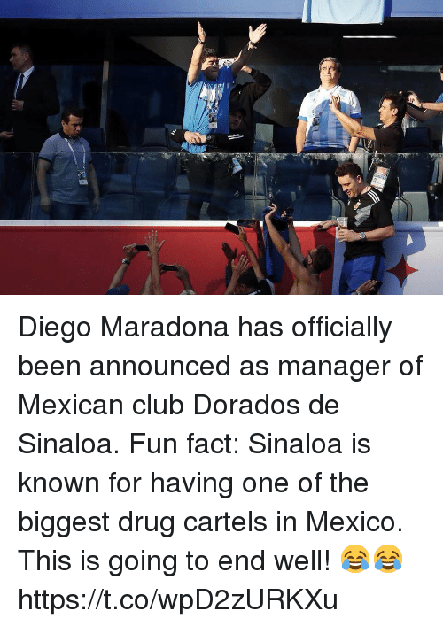 cartels: Diego Maradona has officially been announced as manager of Mexican club Dorados de Sinaloa.  Fun fact: Sinaloa is known for having one of the biggest drug cartels in Mexico.   This is going to end well! 😂😂 https://t.co/wpD2zURKXu